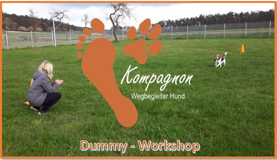 Dummy Workshop